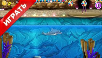 Мое шоу дельфинов 4