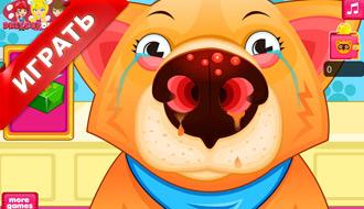 Операция носа животных