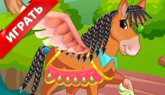 Салон для лошади