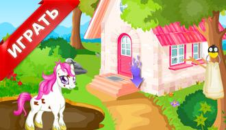 Уход за пони для девочек