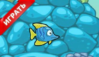 Игры - Рыбные гонки