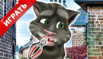 Кот дантист