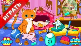 Коты и собаки в салоне