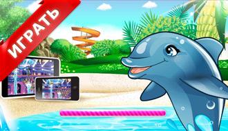 Шоу дельфинов – Мир