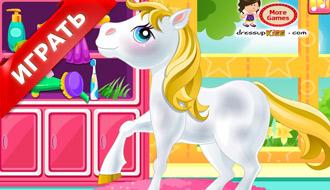 Салон пони