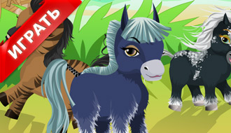 Ферма лошадей