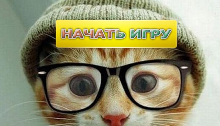 Игры про кота
