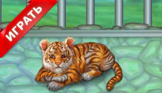 Маленький тигренок