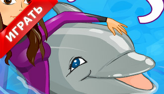 Игра - выступает дельфин